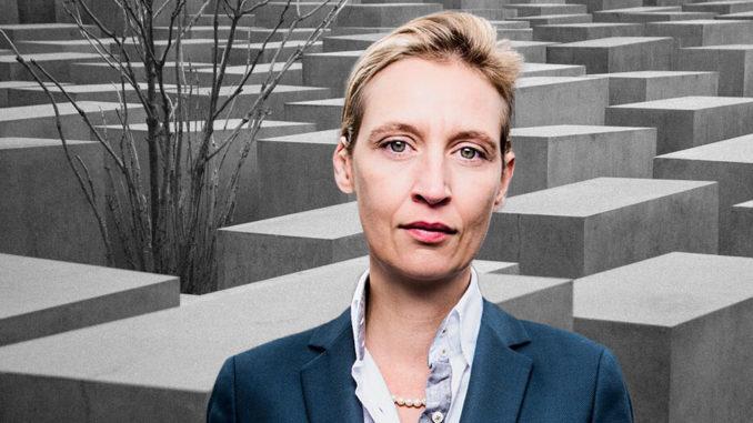 Dr. Alice Weidel, Vorsitzende der AfD-Bundestagsfraktion, FotoAfD/Pixabay-StockSnap