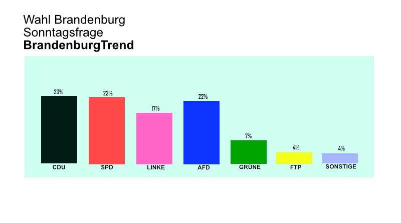 Wahlumfrage: Wunderbare AfD-Umfragewerte in Brandenburg