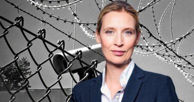 Dr. Alice Weidel, Vorsitzende der AfD-Bundestagsfraktion, FotoAfD/Pixabay_MichaelGaida