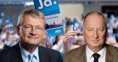 Alternative für Deutschland hat mehr als 30.000 Mitglieder