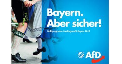 100 Seiten Bayern – AfD veröffentlicht Wahlprogramm