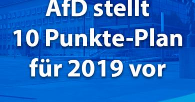 AfD stellt 10 Punkte-Plan für 2019 vor