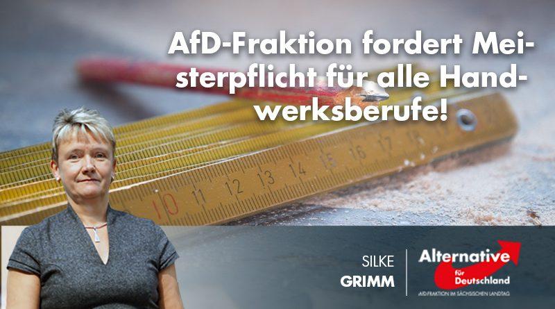 AfD-Fraktion fordert Meisterpflicht für alle Handwerksberufe!