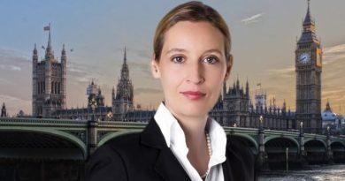 FDP-Fraktionsvize fordert neues Brexit-Referendum