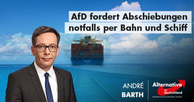 AfD fordert Abschiebungen notfalls per Bahn und Schiff