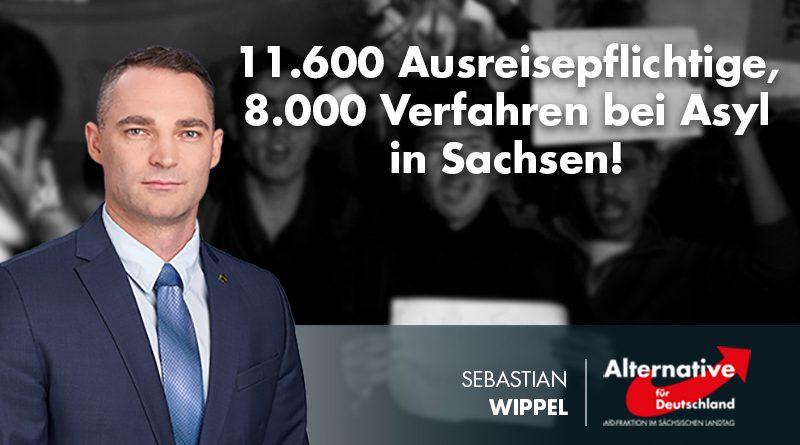 11.600 Ausreisepflichtige, 8.000 Verfahren bei Asyl in Sachsen!