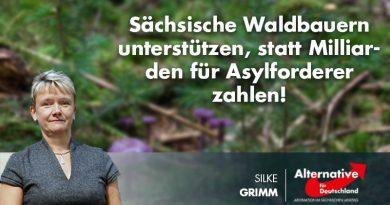 Sächsische Waldbauern unterstützen, statt Milliarden für Asylforderer zahlen!