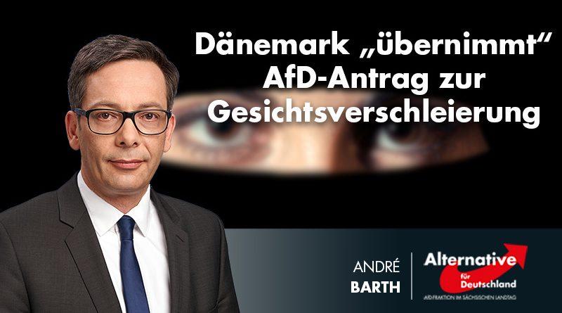 """Dänemark """"übernimmt"""" AfD-Antrag zur Gesichtsverschleierung"""