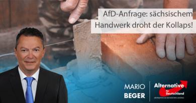 AfD-Anfrage: sächsischem Handwerk droht der Kollaps!