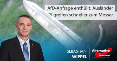 """AfD-Anfrage enthüllt: Ausländer dürfen bis zu neun Mal """"messern"""""""