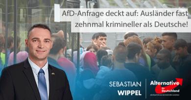AfD-Anfrage deckt auf: Ausländer fast zehnmal krimineller als Deutsche