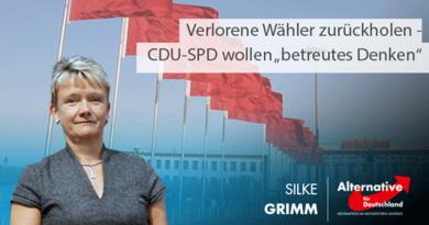 """Verlorene Wähler zurückholen - CDU-SPD wollen """"betreutes Denken"""""""