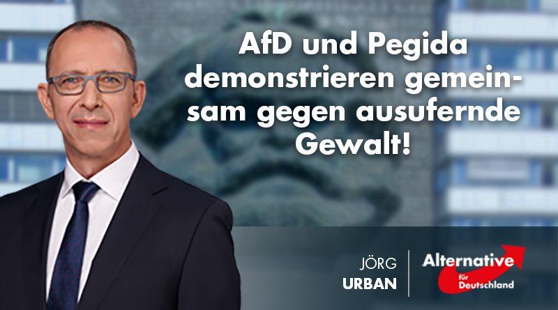 AfD und Pegida demonstrieren gemeinsam gegen ausufernde Gewalt!
