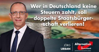 Wer in Deutschland keine Steuern zahlt, soll doppelte Staatsbürgerschaft verlieren!