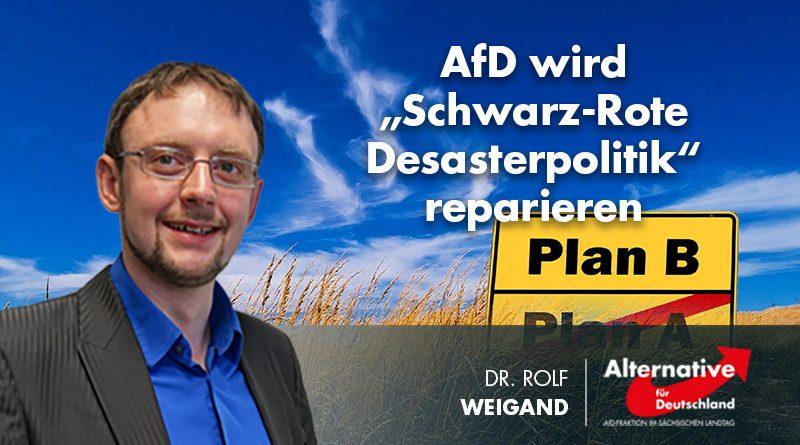 """AfD wird """"Schwarz-Rote Desasterpolitik"""" reparieren"""