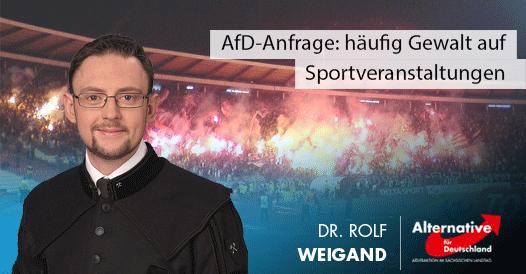 AfD-Anfrage: häufig Gewalt auf Sportveranstaltungen