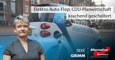 Elektro-Auto-Flop: CDU-Planwirtschaft krachend gescheitert