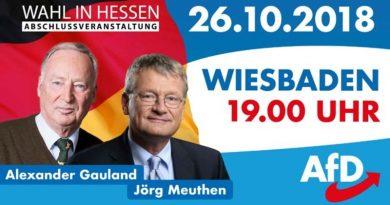 Hessenwahl: Rahn, Meuthen, Gauland am 26.10. in Wiesbaden, 19 Uhr