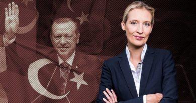 """Erdogan-Anhänger sollten """"ihren Präsidenten"""" am besten in der Türkei feiern"""