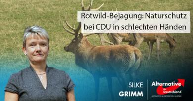 Rotwild-Bejagung: Naturschutz bei CDU in schlechten Händen