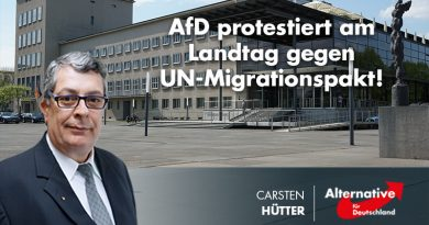 AfD protestiert am Landtag gegen UN-Migrationspakt!