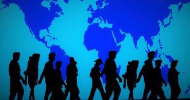 Migrationspakt: Petitionsausschuss blockiert, Gauland heute um 10.05 Uhr im Bundestag
