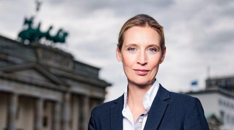 Wirtschaftsstandort Deutschland im freien Fall