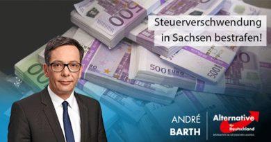 AfD stellt alternativen Haushalt vor