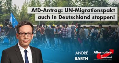 AfD-Antrag: UN-Migrationspakt auch in Deutschland stoppen!