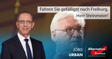 Fahren Sie gefälligst nach Freiburg, Herr Steinmeier!