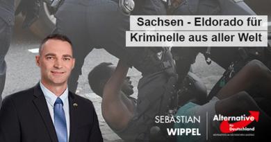 Sachsen - Eldorado für Kriminelle aus aller Welt