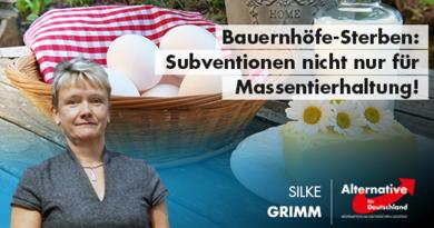 Bauernhöfe-Sterben: Subventionen nicht nur für Massentierhaltung!