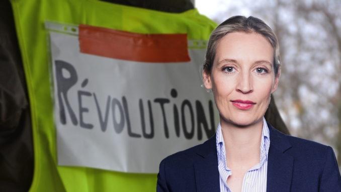 Die Proteste der 'Gelbwesten' in Frankreich betreffen die gesamte EU