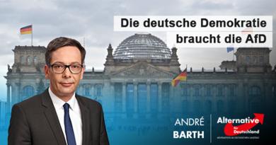 Die deutsche Demokratie braucht die AfD