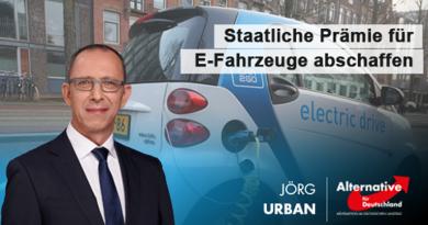 Staatliche Prämie für E-Fahrzeuge abschaffen