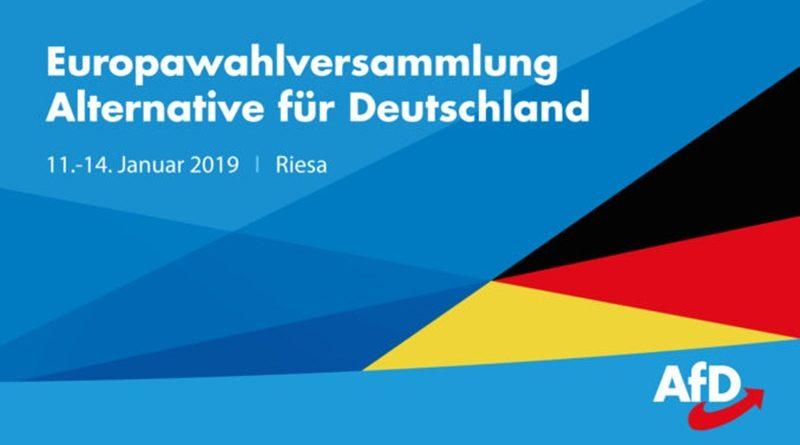 Die ersten 15 Kandidaten der AfD für die Europawahl 2019 sind gewählt.