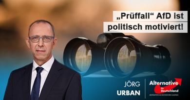 Verfassungsschutz-Prüfung der AfD ist rein politisch motiviert