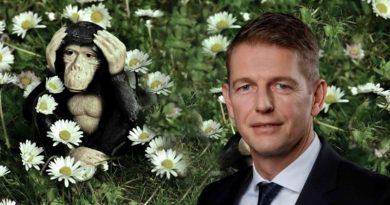 Umweltausschuss-Eklat: GRÜNE dulden keine fakten-orientierte Gegenrede