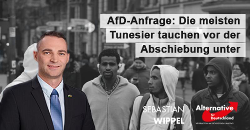 AfD-Anfrage: Die meisten Tunesier tauchen vor der Abschiebung unter