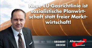 Neue EU-Gasrichtlinie ist sozialistische Planwirtschaft statt freier Marktwirtschaft