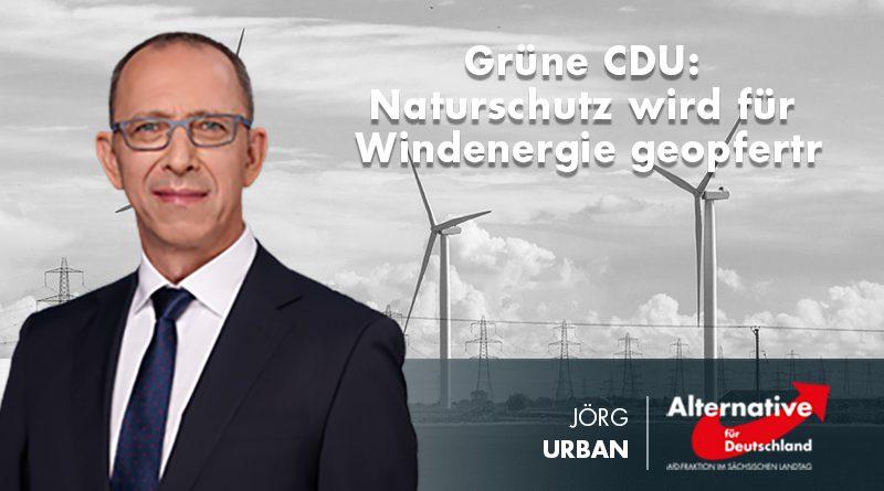 Grüne CDU: Naturschutz wird für Windenergie geopfert