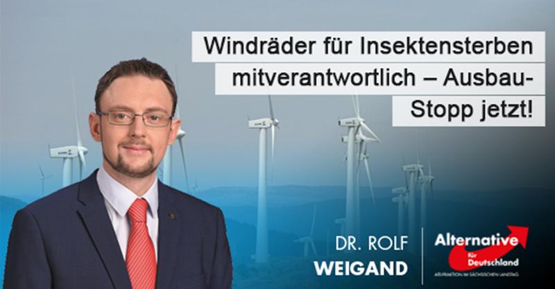 Windräder für Insektensterben mitverantwortlich – Ausbaustopp jetzt!