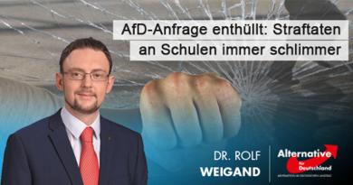 AfD-Anfrage enthüllt: Straftaten an Leipziger Schulen immer schlimmer