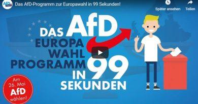 Das AfD-Programm zur Europawahl in 99 Sekunden
