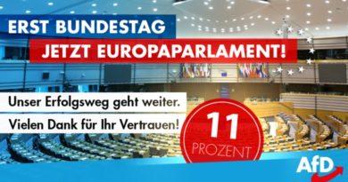Die AfD ist im EU-Parlament mit elf Abgeordneten vertreten