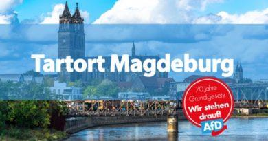 Bei Angriff auf AfD-Wahlkampfstand in Magdeburg zwei Personen verletzt