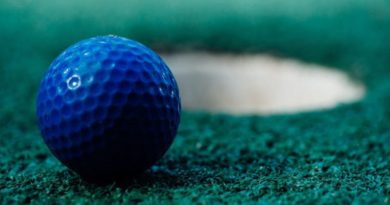 AfD bleibt am Ball: Lotto Sachsen-Anhalt wegen Fördermitteln an Golfclub im Visier