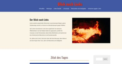 AfD-Berlin stellt Internet-Portal zum Linksradikalismus ins Netz