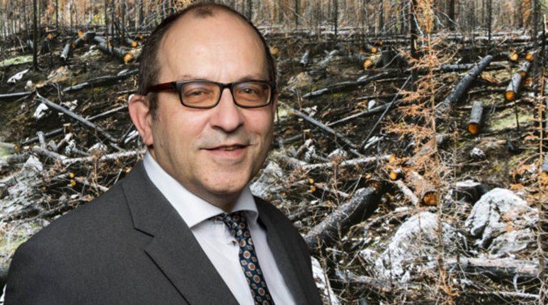 Landesregierung Thüringen verweilt trotz großer Waldschäden im planlosen Modus