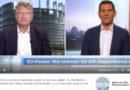 Meuthen im MoMa: Wählertäuschung, von der Leyen wäre keine gute Wahl
